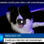 RIVIERA DOS CÃES NO JORNAL RIT TV